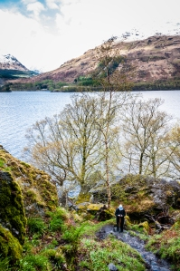 Along the shores of Loch Lomand the West Highland Way undulates mercilessly, but the scenery is well worth the effort.