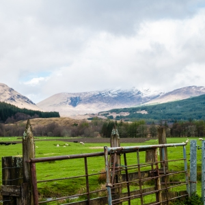 The snowy summit of Meall Adhar looms large over the green pastures of Auchtertyre along the West Highland Way.