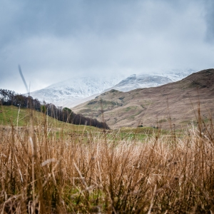 More snow covered summits seen from the West Highland Way.