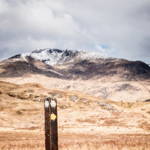 The graphic thistle on a post marks the route of the West Highland Way.