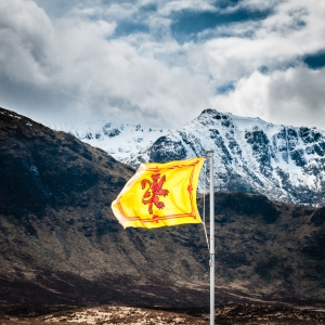 Officially there are restrictions as to how the Royal Standard of Scotland can be displayed and by whom, but enforcement seems to be rather lax these days.