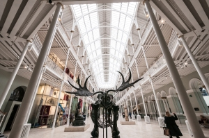 Ever wondered what the National Museum of Scotland looked like through the ass end of a giant deer? Now you know.